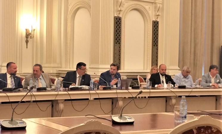 Reprezentantul Ministerului Afacerilor de Externe a demonstrat eşecul PSD şi ALDE de a crea un cadru legislativ adecvat al procesului de votare in Diaspora