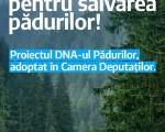 """Uniţi Salvăm Pădurile României! """"DNA-ul Pădurilor"""" adoptat de Camera Deputaţilor -"""